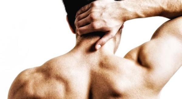Bol u mišićima