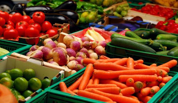 Povrće u ishrani