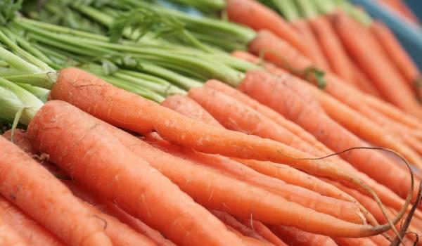 Upotreba mrkve u ishrani veoma bitna za naše zdravlje