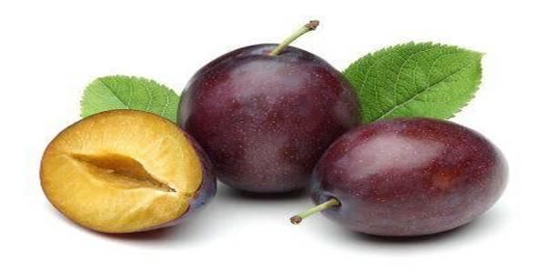 Zašto je šljiva najzdravije voće i kako doprinosti vašem zdravlju?