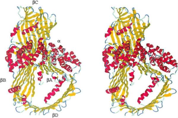 Lipoproteini