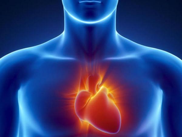 Faktori rizika za kardiovaskularne bolesti
