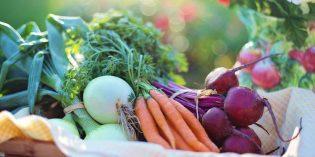 Sačuvajte zdravlje – zbog čega treba jesti organsko?